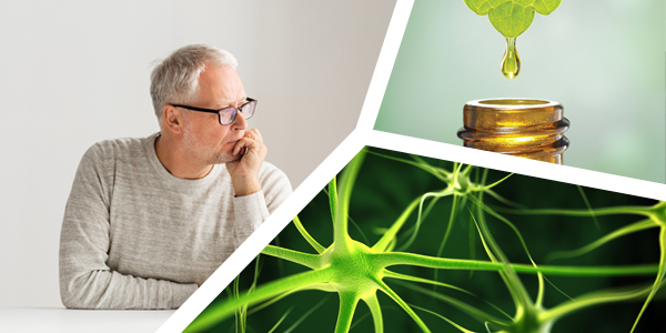 Φυσικές ουσίες για υγιή εγκέφαλο